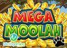 Microgaming's Mega Moolah Jackpot Hit!
