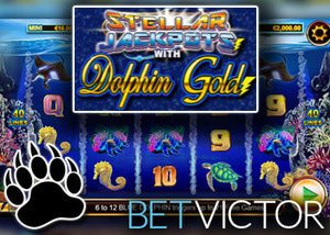 new stellar jackpots with dolphin gold slot lightning box casino bet victor