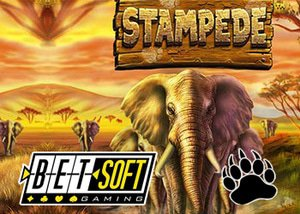 betsoft casinos new stampede slot