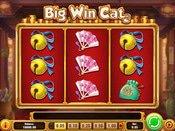 Big Win Cat Game Preview