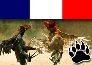 New Cock fighting Rings Prohibited In France Following Highest Court Ruling