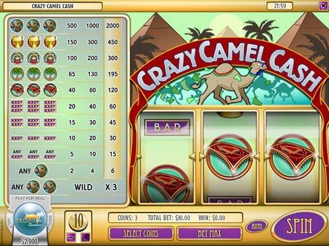 Crazy Camel Cash Game Preview