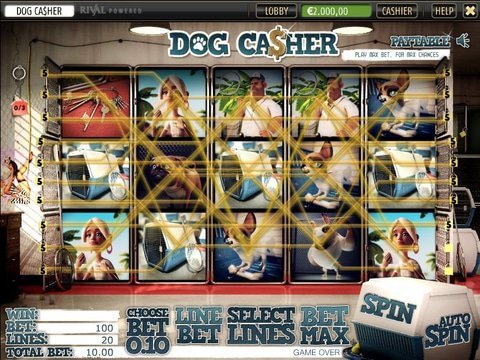 Dog Casher Game Preview