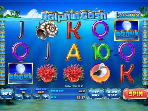 Dolphin Cash Game Preview