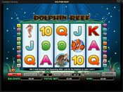 Dolphin Reef Game Preview