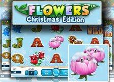 Flowers Christmas Edition