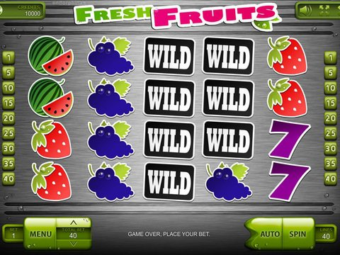 Fresh Fruits Game Preview