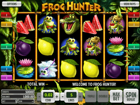 Frog Hunter Game Preview