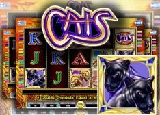 Cats iPhone Slot