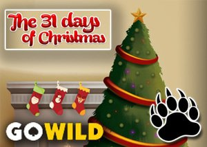 31 Days of Christmas Promotion GoWild Casino