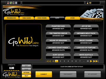 Gowild Casino Software Preview