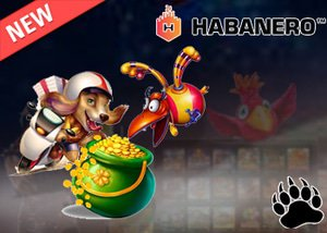 Habanero Casinos New Jackpot Race System