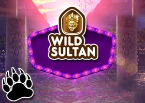 Wild Sultan's Casino Challenge - May 2016