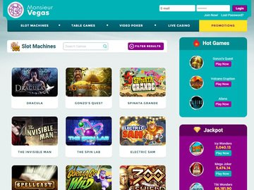 Monsieur Vegas Casino Software Preview