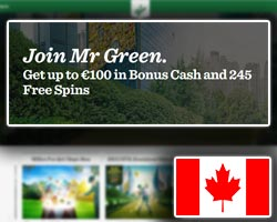 casino welcome bonus and promotions mr green