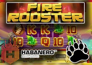new fire rooster slot habanero casinos