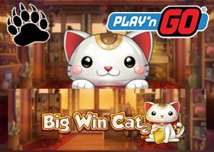playngo casinos new big win cat
