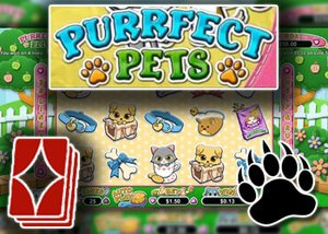 new perfect pet slots rtg casinos