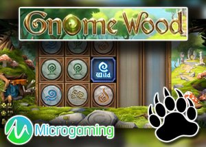 new wood gnome slot microgaming casinos