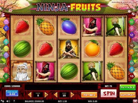Ninja Fruits Game Preview