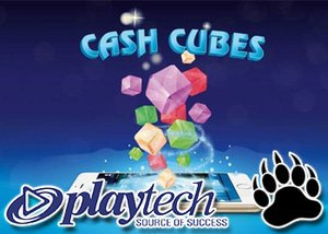 Playtech Announce Speed Cash Cubes Bingo - Each Game Lasts 2 Mins!