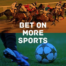 bet on all sports
