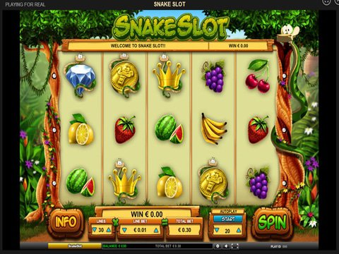 Snake Slot Game Preview