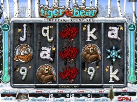Tiger vs Bear Game Preview