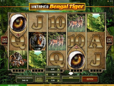 Untamed Bengal Tiger Game Preview