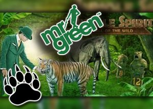 mr green untamed prize draw adventure