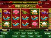 Wild Dragon Game Preview