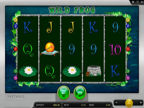Wild Frog Game Preview