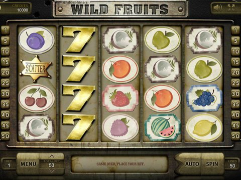 Wild Fruits Game Preview