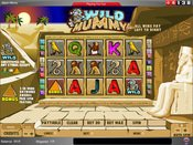 Wild Mummy Game Preview