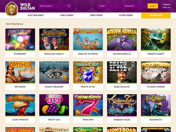 Wild Sultan Casino Software Preview