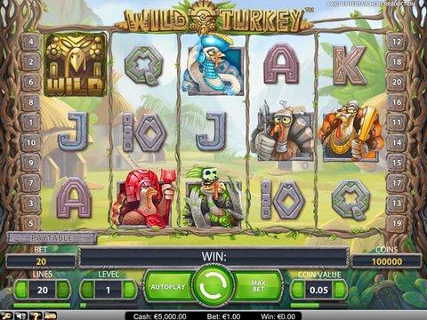 Wild Turkey Game Preview