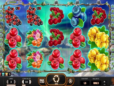Winter Berries Game Preview